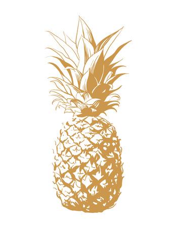 Vector hand getrokken ananas. Tropische zomer fruit gegraveerde stijl illustratie. Perfect voor uitnodigingen, wenskaarten, posters.