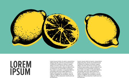 Vector hand drawn lemon. Tropical fruit. Sketch. Pop art. Healthy eating vector concept with lemons and copyspace. Diet and organic food template.