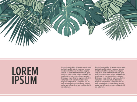 Tropic leaves background with place for your text. Ilustrace