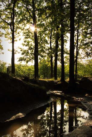 cours d eau: Cours d'eau 2 Banque d'images