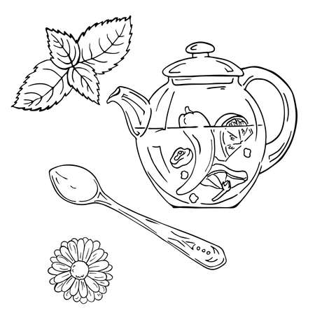 Teapot with tea, teaspoon and herbs sketch. Hand drawn vector illustration. Cartoon ink sketch.