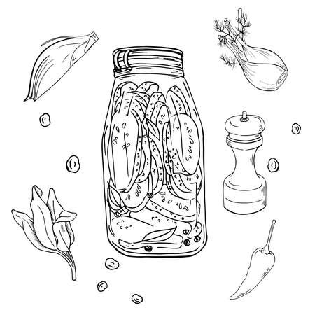 Jar of pickled vegetables on white background. Cucumber slices, spices and herbs sketch. Hand drawn vector illustration.
