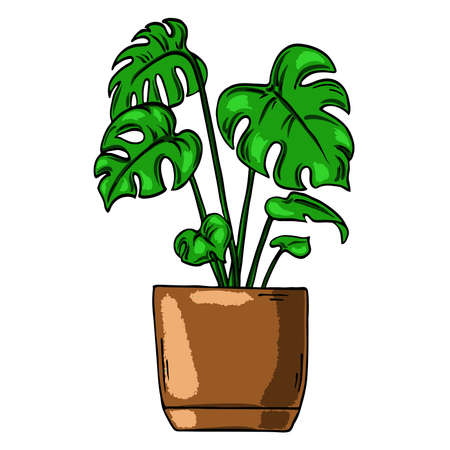 Green house plant in brown pot isolated on white background. Cartoon ink sketch. Hand drawn vector illustration. Ilustração