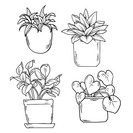 Home plants set isolated on white background. Cartoon ink sketch. Hand drawn vector illustration.