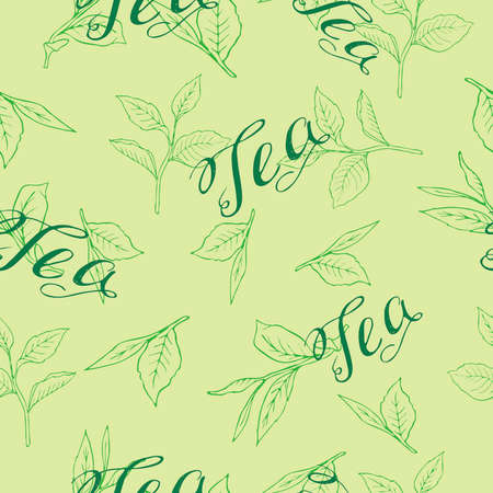Seamless pattern with tea leaves on pastel green background. Hand lettering. Hand drawn vector illustration. Banco de Imagens - 104629151