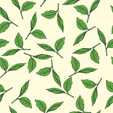 Seamless pattern with green tea leaves on pastel beige background. Hand drawn vector illustration. Banco de Imagens - 104628138