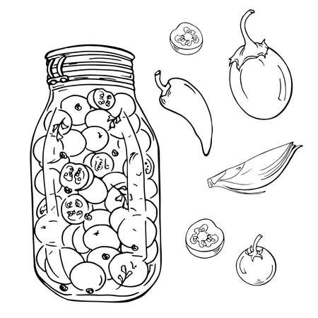 Jar of pickled vegetables on white background. Tomatoes, spices and herbs sketch. Hand drawn vector illustration.