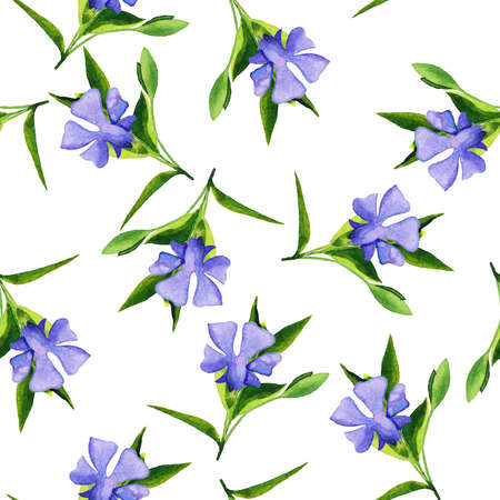 Green leaves on white background. hand drawn watercolor illustration.