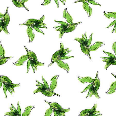 Green tea leaves seamless pattern painted by watercolor and ink. Hand drawn illustration.