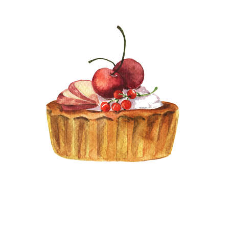 Sandy paste tart with cream, red currant, cherry and apple slices. Hand drawn watercolor illustration.