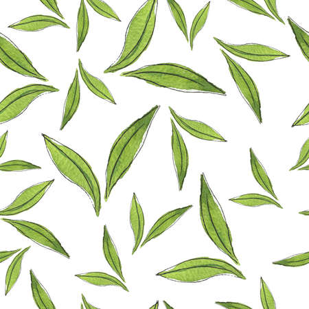 Seamless pattern with green tea leaves on white background. Cartoon watercolor and ink sketch. Hand drawn illustration.