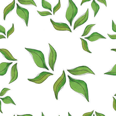Seamless pattern with green tea leaves on white background. Cartoon  and ink sketch. Hand drawn illustration.
