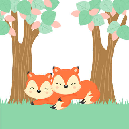 Cute couple foxes in the forest.