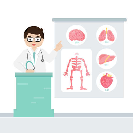 Doctor describe human internal organs vector illustration. Illustration