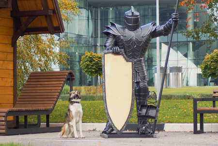 The dog and the knight in the heavy armor