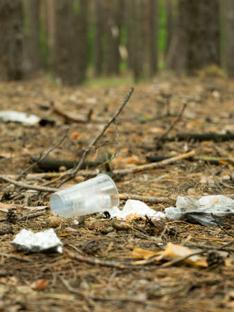 Garbage in forest. People illegally thrown garbage into forest. Concept of man and nature.