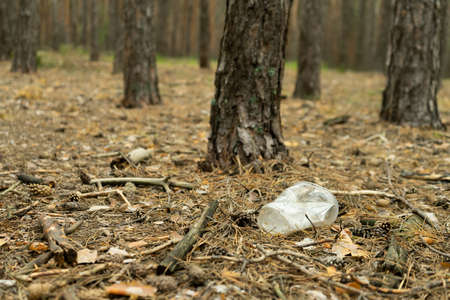 Empty plastic cup in the form of garbage in the forest thrown by man. The concept of environmental pollution by human life products.