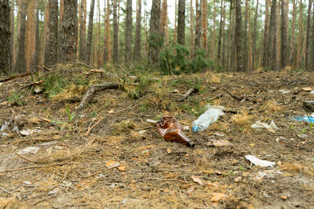 Empty plastic bottle in the form of garbage in the forest thrown by man. The concept of environmental pollution by human life products.