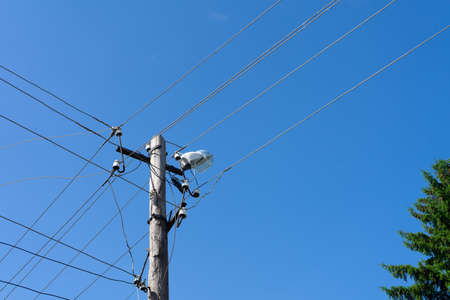 Old wooden electric pole with a lamp and many cables that run in different directions. Cloud sky. Banco de Imagens