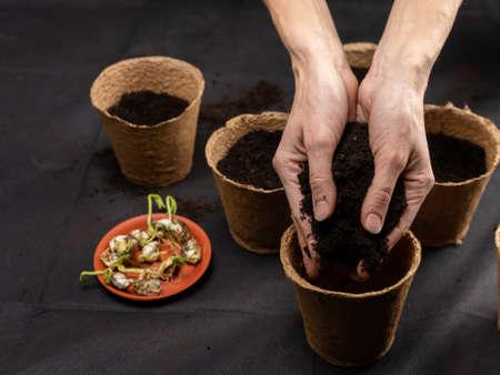 Soil in the hands of women, peat flower pot. Stock Photo