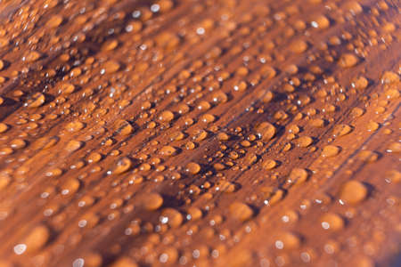 Raindrops on the metal profile sheet. Brown profiled metal sheet with dew drops. Фото со стока