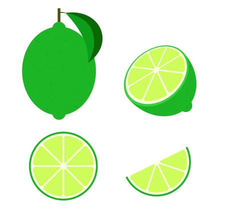 Fresh lime set isolated on white background vector illustration Çizim