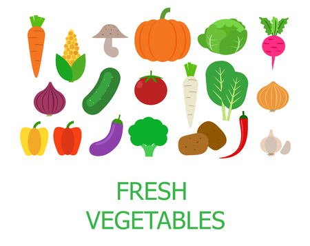 Set of fresh organic vegetables vector illustration.