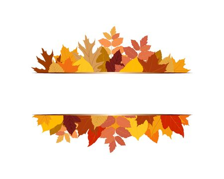 Vector illustration of various colorful autumn leaves with banner on white background Ilustração