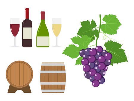 Grape and wine product vector set - Vector illustration
