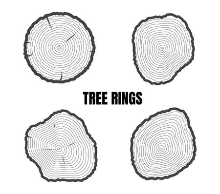 Collection of tree rings isolated on white background - Vector illustration