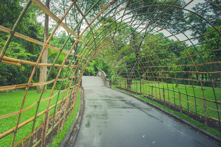 Bamboo wooden tunnel walkway at public park in rainy day. Stock Photo