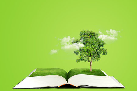 Ecology Concept : Green tree growth thru from opened book. Imagens