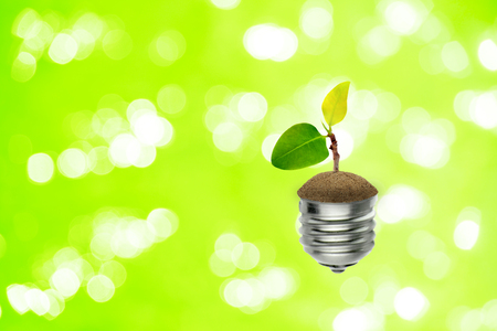 Ecology Concept : Little green sprout tree growth in light bulb with bokeh light in the background. Stock Photo