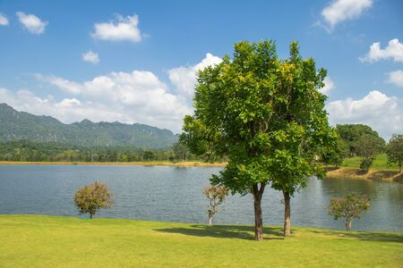 Beautiful landscape of Green tree growth on green grass nearly lake with mountain and blue sky in background.