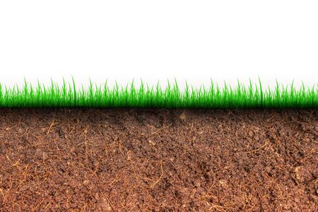 Abstract image of Cross section brown soil and green grass in underground. 写真素材