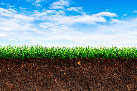 Cross section brown soil and green grass in underground with blue sky in background. Stock Photo
