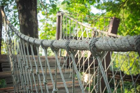 Selective focus of Rope handling of walkway bridge hanging on trees.