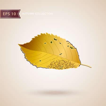 Autumn falling leaves. Leaf fall. Autumn design. Vector illustration 일러스트