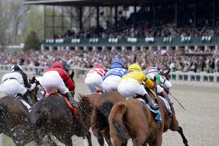 View from behind of jockeys on horses rounding the corner during horse race.
