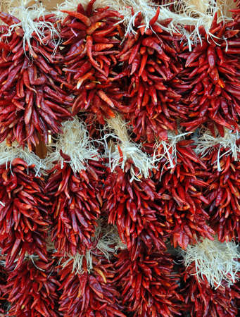 Strands of Red Chili Peppers in New Mexico. Stock Photo - 5113181