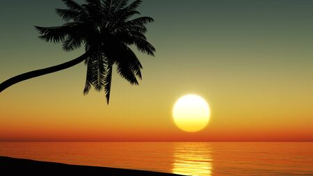 Sunset at the tropical beach with coconut palm trees silhouette Stock fotó