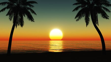 beach sunset: Sunset at the tropical beach with coconut palm trees silhouette Stock Photo