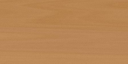 background texture of beech wood