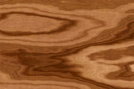 textura madera: fondo de textura de madera de olivo, primer plano