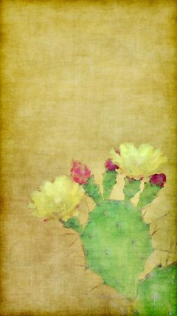 bloom: painting with cactus in bloom on grunge background with empty space for text