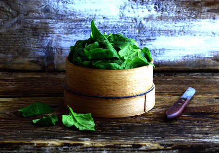 'baby spinach': Baby spinach in a wooden flour sieve, vintage still life Stock Photo
