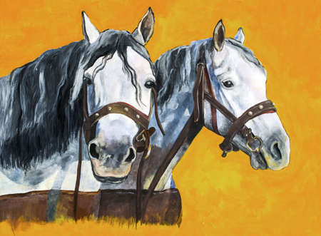 two animals: Shire horses portrait painting
