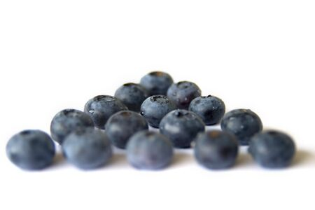 Blueberries in rows on a white background