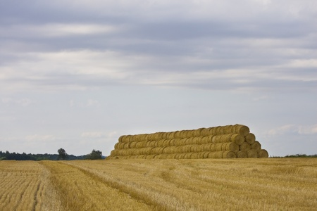 Straw bales on a big pile photo