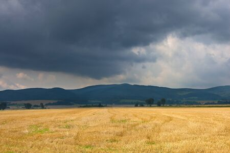 Field landscape during a stormy weather.